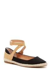 Seychelles View Pointed Toe Ankle Strap Flat Black