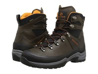 Scarpa R Evolution Plus Gtx Tundra Men's Shoes Brown