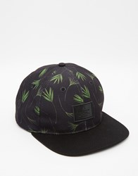Asos Snapback Cap With Leaf Print Crown Black