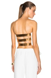 Derek Lam 10 Crosby Strapless Corset With Metallic Bands In White