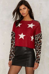 Nasty Gal Stars And Spots Cropped Sweater Animal