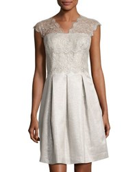 Kay Unger New York Fit And Flare Lace Trim Dress Silver