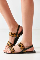 Urban Outfitters Penny Leopard Sandal Brown Multi
