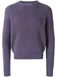 Stella Mccartney Crew Neck Sweatshirt Cotton Pink Purple