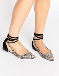 Asos Lolly Pointed Ballet Flats Snake Mix Multi