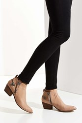 Dolce Vita Saylor Ankle Boot Taupe