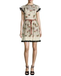 Red Valentino Blooming Garden Short Sleeve Tulle Dress Soya