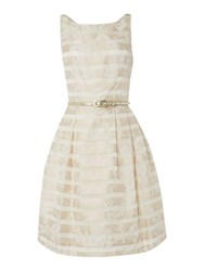 Untold Fit And Flare Stripe Jacquard Dress Ivory