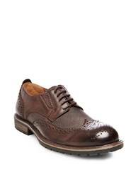 Steve Madden Sparx Leather Wingtip Oxfords Brown