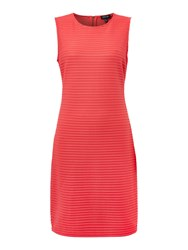 Episode Sleeveless Bodycon Dress With Organza Stripe Watermelon