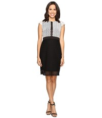 Christin Michaels Helene Color Block Lace Dress Ivory Black Women's Dress Multi
