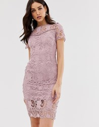 Paper Dolls All Over Lace Short Sleeve Pencil Dress Pink