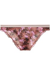 Love Stories Ivy Floral Print Stretch Tulle Briefs Antique Rose