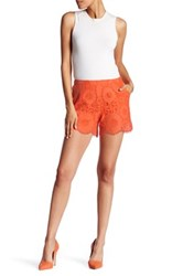 Trina Turk Embroidered Knit Lace Short Blue