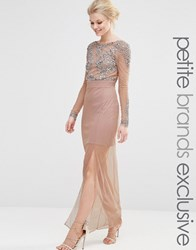 Maya Petite All Over Mesh Maxi Dress With Embellished Bodice Detail Nude Pink