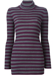 Erika Cavallini Semi Couture Striped Roll Neck Sweater Pink And Purple