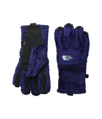 The North Face Denali Thermal Etip Glove Garnet Purple Surf Green Extreme Cold Weather Gloves
