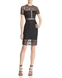 Bailey 44 Want To Be Lace Dress Black