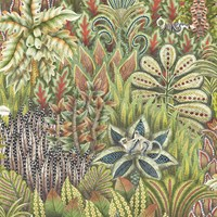 Cole And Son Singita Wallpaper 109 7034