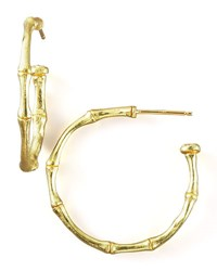 Dominique Cohen Bamboo Hoop Earrings Gold