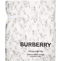Burberry Multicolor Oversized Silk Padded Scarf