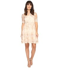 Adrianna Papell Short Elbow Length Embroidered Party Dress Blush Gold Women's Dress Pink