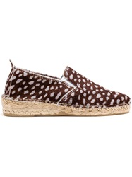 Prism Spotted Espadrilles Brown