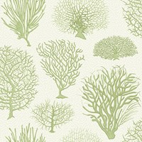 Cole And Son Seafern Wallpaper 107 2008
