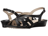 Fitzwell Ping Black Burnished Leather Women's Sandals