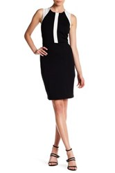 Eva Franco Reyson Colorblock Dress Black