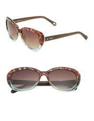 Fossil 55Mm Cat's Eye Sunglasses Brown
