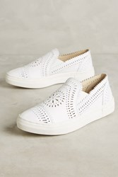 Anthropologie Seychelles So Nice Leather Sneakers White