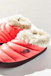 The North Face Tent Mule Slipper Coral