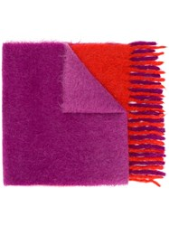 Forte Forte Fringed Scarf Pink And Purple