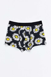 Urban Outfitters Sunflowers Truck Black Multi
