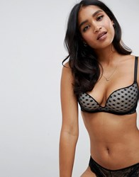 Dorina Erin Push Up Wireless Dot Mesh Bra Black