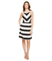 Adrianna Papell Printed Stripe Stretch Cotton Halter Neck Fit And Flare Dress Black White Women's Dress