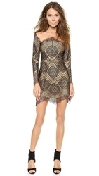 For Love And Lemons Grace Mini Dress Black Nude