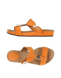 Scholl Footwear Sandals Women Orange