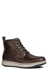 Geox Abroad Abx 2 Tall Lace Up Boot Dark Coffee Leather