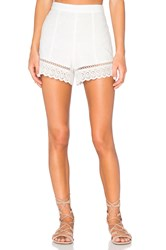 Endless Rose Lace Short White