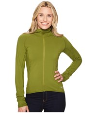 Arc'teryx Adahy Hoodie Creekside Sweatshirt Green