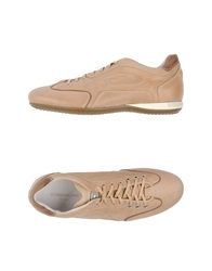 Guardiani Sport Sneakers Beige