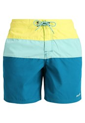 Brunotti Catamaran Swimming Shorts Atlantis Mint