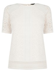 Warehouse Panelled Lace Top Cream