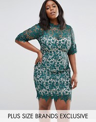 Paper Dolls Plus Crochet Pencil Dress Green