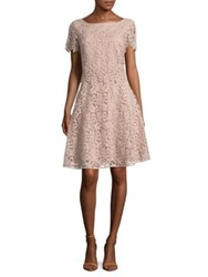 Nue By Shani Short Sleeve Lace Dress Champagne