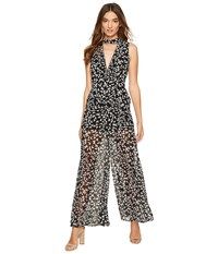 Keepsake Come Around Jumpsuit Dark Ivy Print Women's Jumpsuit And Rompers One Piece Blue