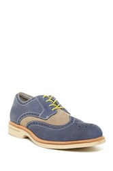 Sperry Gold Wingtip Oxford Blue