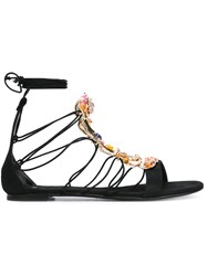 Casadei Stone Embellished Lace Up Sandals Women Leather Nappa Leather Brass Kid Leather 36 Black